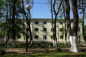 Лагерь ростовская область ромашка