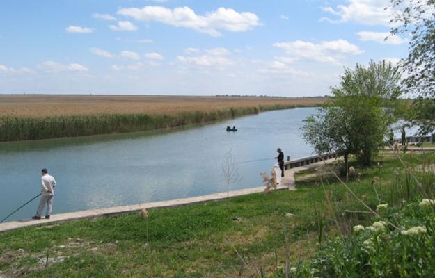 рыбалка в ростовской обл маныч
