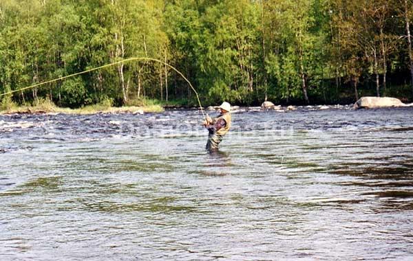 база для рыбалки на реке
