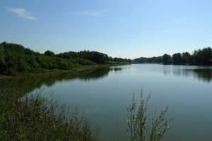 рыболовные базы в чеховском районе